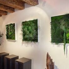 Зеленые картины, панно, деревья